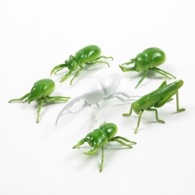 셰인 레진 곤충기(사슴벌레/풍뎅이 6종)