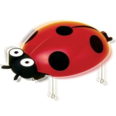 아카데미과학 무당벌레 만들기 (진동로봇)