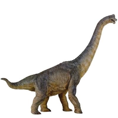 파포 (공룡 모형완구) 브라키오사우루스 (55030)