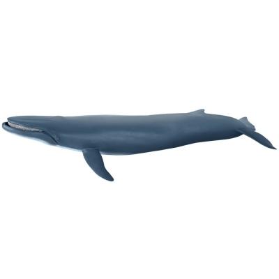 파포 흰긴수염고래 대왕고래 (56037)