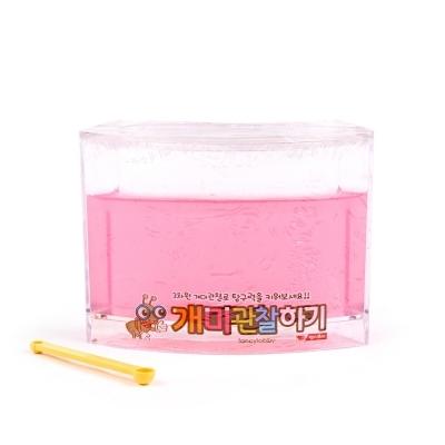 팬시로비 개미 관찰하기 (소) (핑크) (1012)