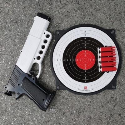 가가월드 금메달 공기권총 안전사격다트