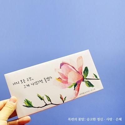 꽃말시리즈 목련꽃 용돈편지봉투