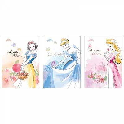 디즈니 프린세스 노트 3종 (각 2권씩) 6권 세트 ( 백설공주 신데렐라 오로라 )